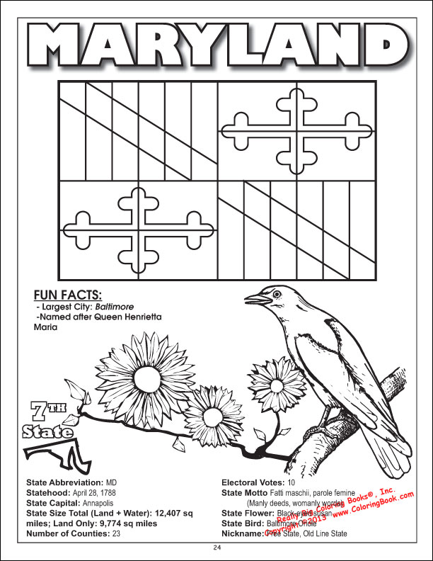 Wholesale Coloring Books 50 United States - Coloring, Activity & Game Book