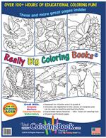 Butterflies and Birds Coloring Book back cover